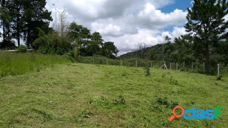Terreno - venda - santana de parnaiba - sp - nova jaguaribe