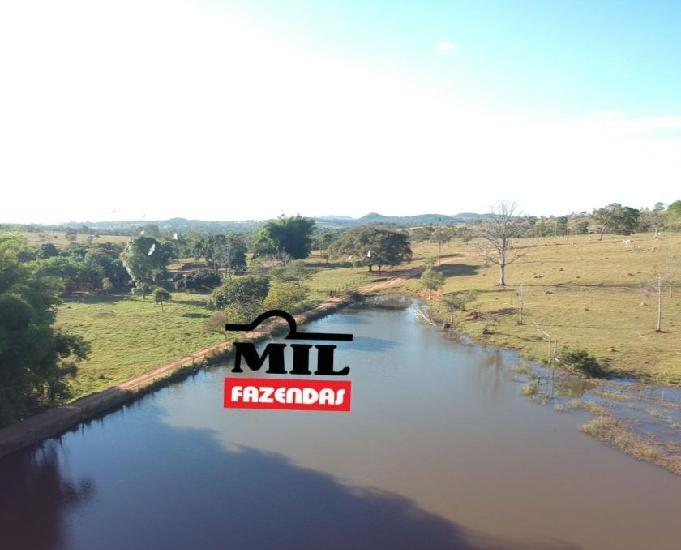 Fazenda 50 alqueires 242 hectares - itapuranga-go