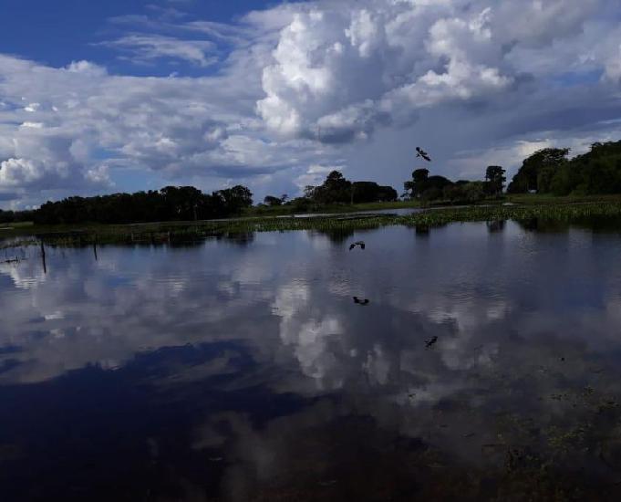 Fazenda 674 alqueires (3.262 hectares) araguacu-to