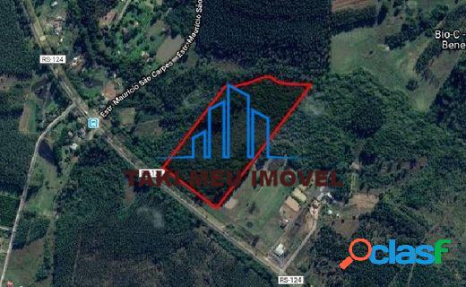 Excelente área de terras de 66.559,97 m² distrito potreiro grande 6,6ha