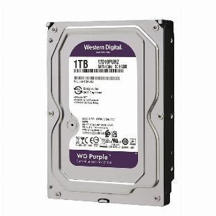 Hd western digital 1tb purple