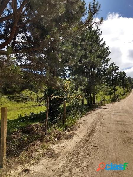 CHÁCARA COM ESCRITURA NO BAIRRO ÁGUAS CLARAS - MUNICÍPIO RANCHO QUEIMADO-SC 3