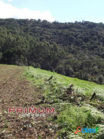 Sítio - venda - petrolandia - sc - rural