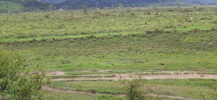 Bela fazenda em silva jardim, boa parte plana, margens br