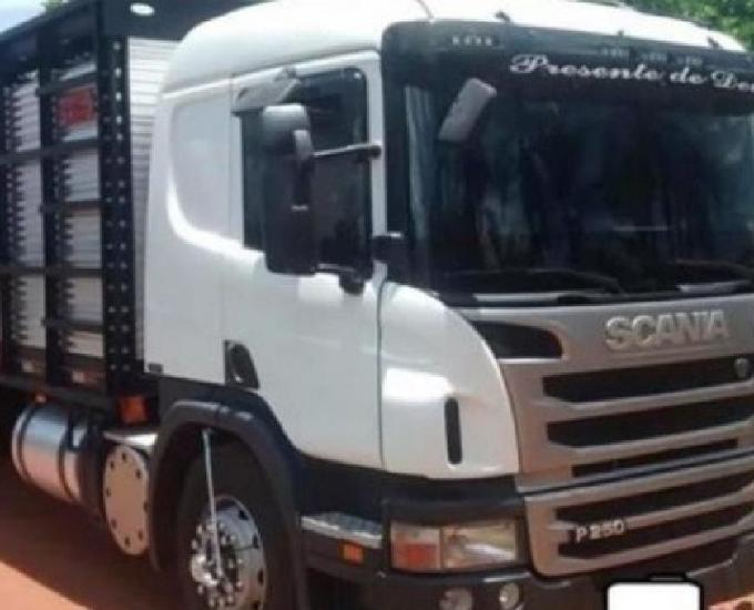 Scania p 250 truck