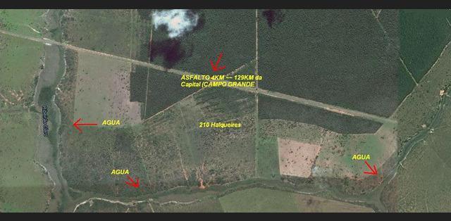 Fazenda ribas do rio pardo - ms - mgf imóveis
