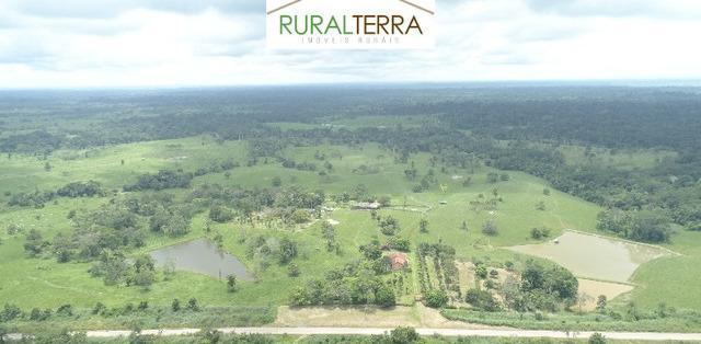 Excelente fazenda no estado do acre - mgf imóveis