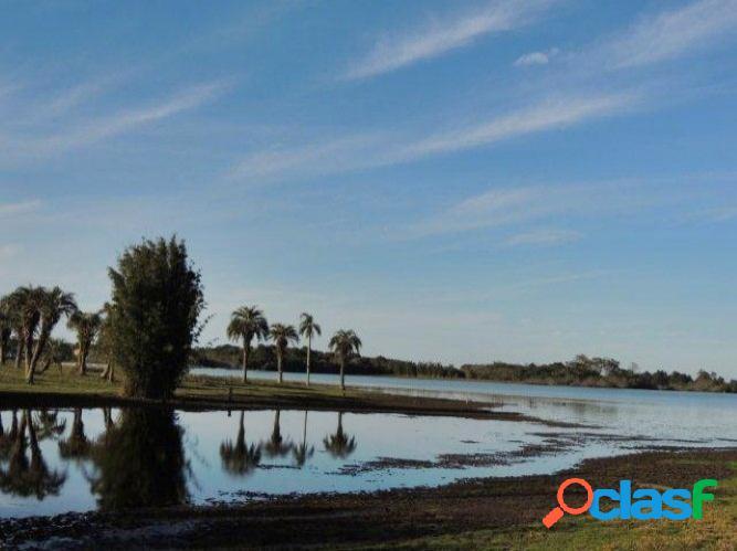 Área de 25.8 hectares, campo, lagoa, águas claras / viamão