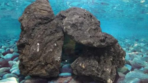 Rochas para aquário volcano black rock - 1kg
