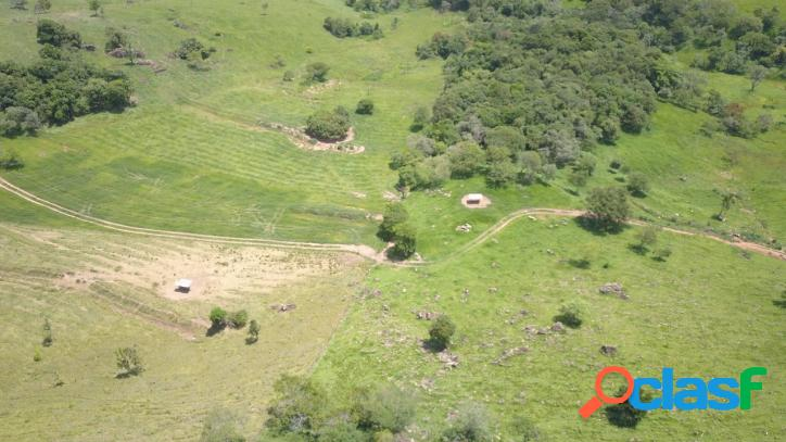 Fazenda venda - taguaí - sp