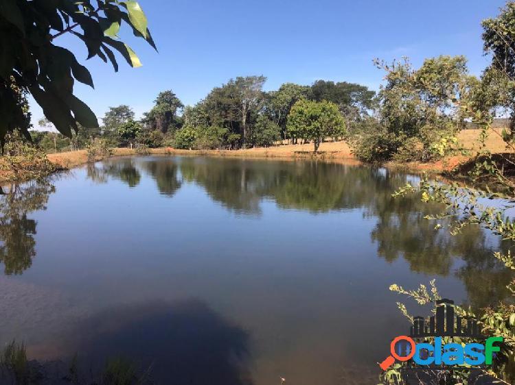 Fazenda em aragoiania com 80 hectares de pastagem