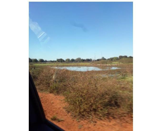 585 alqs dupla aptidão úmida plana rio tem logística e