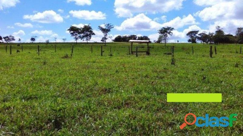 186 Alqs Cultura 116 Formados Pires Do Rio Goiás