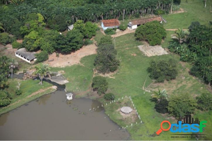 Fazenda em jussara com 220 hectares próxima a cidade