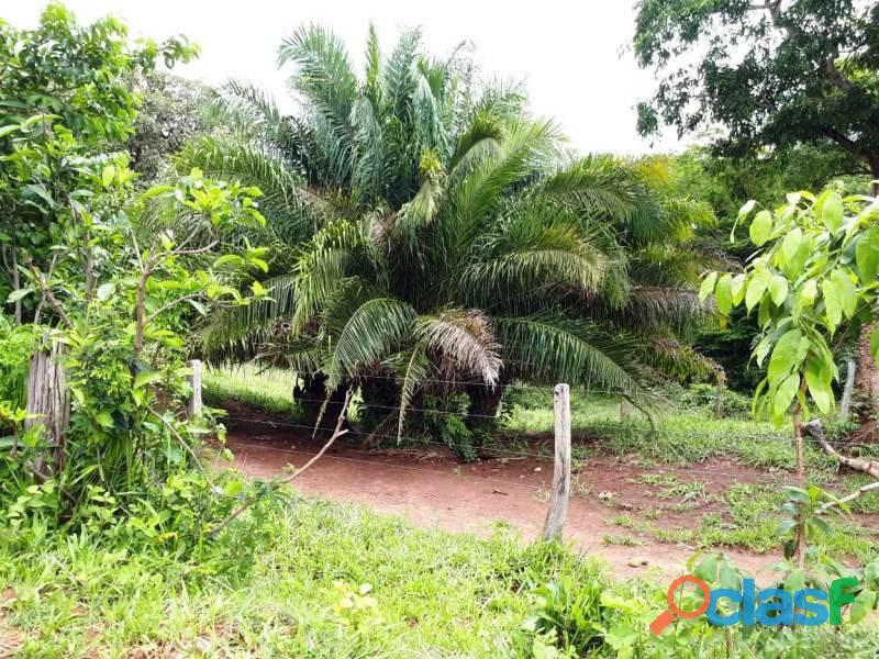 148 Alq. Culturão De Bacurí água própria sul goiano 2