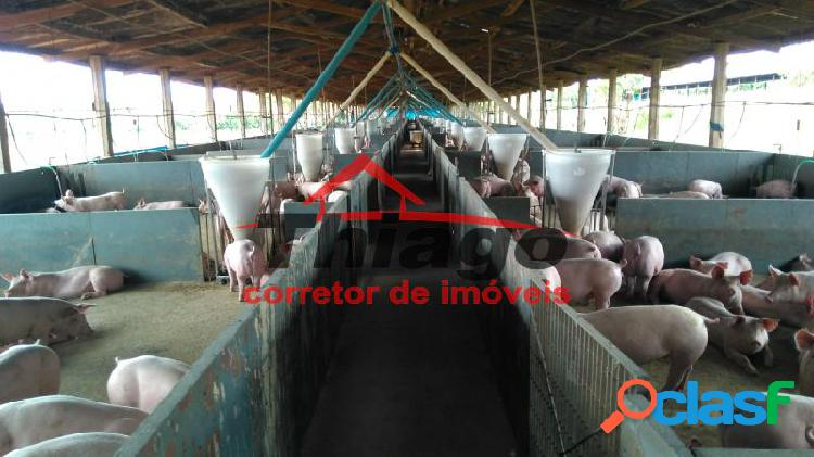 Fazenda em uberlândia - zona rural por 2.8 milhões à venda