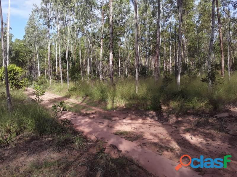 1.000 Alqueires Bruta Rica Em Água Plana Novo Acordo TO