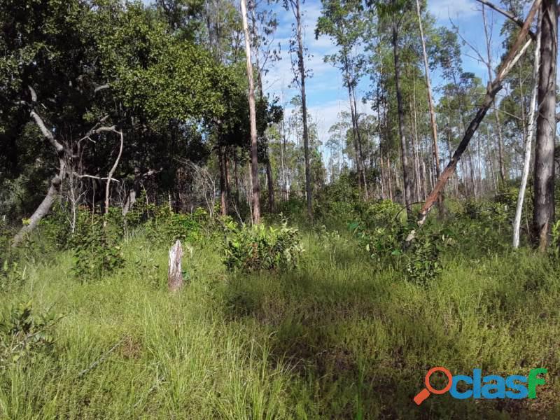 1.000 Alqueires Bruta Rica Em Água Plana Novo Acordo TO 6