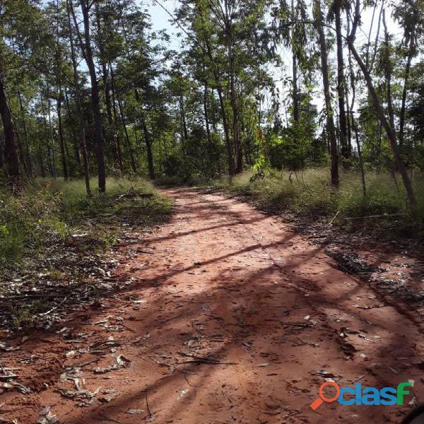 1.000 Alqueires Bruta Rica Em Água Plana Novo Acordo TO 3