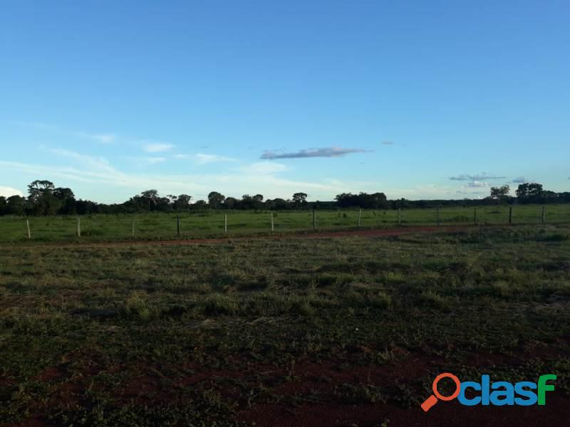 6.611 Alqs Porteira Fechada Formada Região Rio Formoso TO