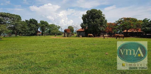 Vendo fazenda à venda, na zona rural de campo grande-ms