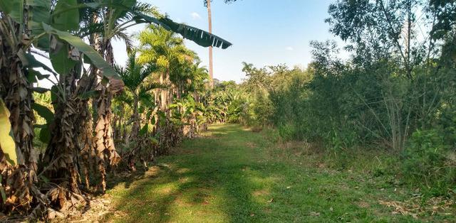 Rea com 12 hectares - mgf imóveis