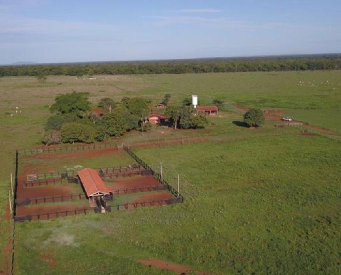 Fazenda extra no vale do araguaia 158 alqueires jussara-go