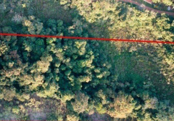 Terreno de mata nativa com mina de água em salto grande