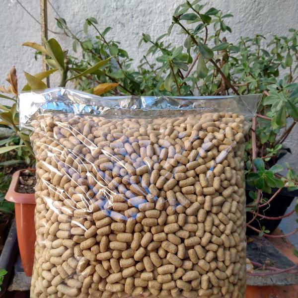 Equilibrato 3kg + mix para ratos 500g