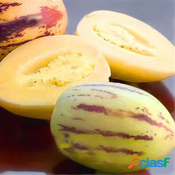 Egrow 100 unidades / pacote melão doce sementes raro frutas melão planta sementes pátio do jardim varanda semente vegetal