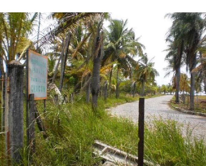 Sítio praia de mangue seco área beira mar 33,60ha nova