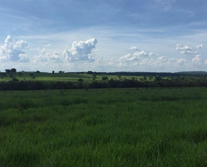 Excelente fazenda com 1.452 hectares na região de coxim ms