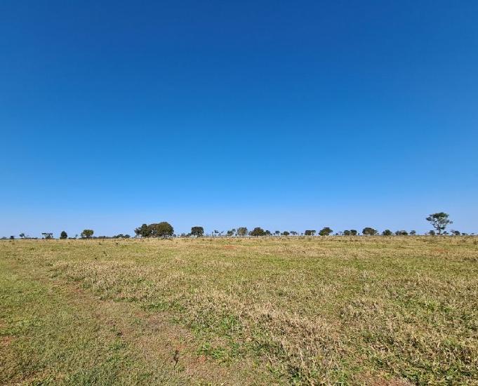 Excelente fazenda com 790 alqueires região de casa verde ms