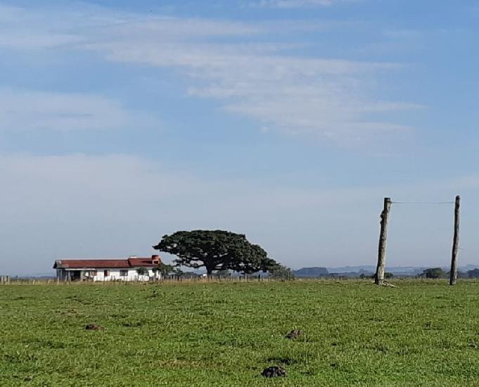 Fazenda 583 ha soja e pecuária capão da porteira capivari
