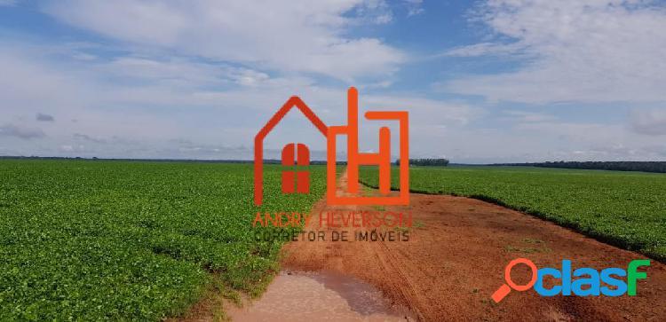 Fazenda em campo novo do parecis-mt distância de campo novo 120km de