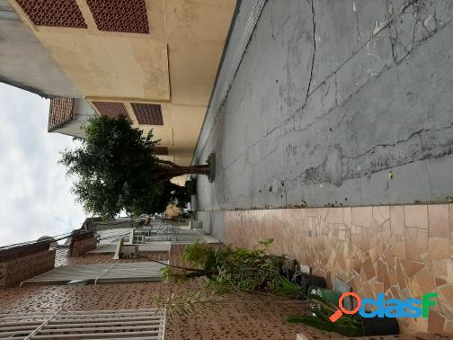 (26491) Rua Ibituruna - Tijuca 2