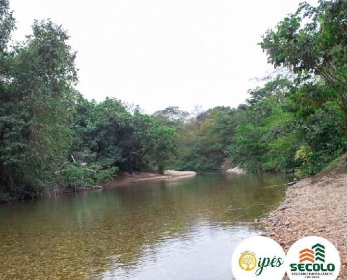 Lotes com acesso ao rio