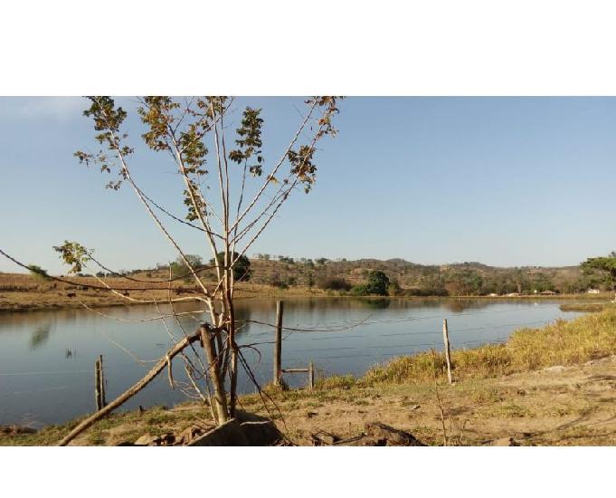 Vende chácara 19,50 ha. mun.avelinópolis.à 60km de
