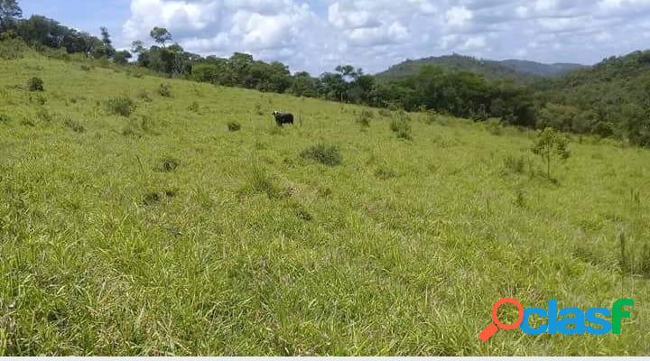 Excelente terreno rural de 68 ha em piranga-mg