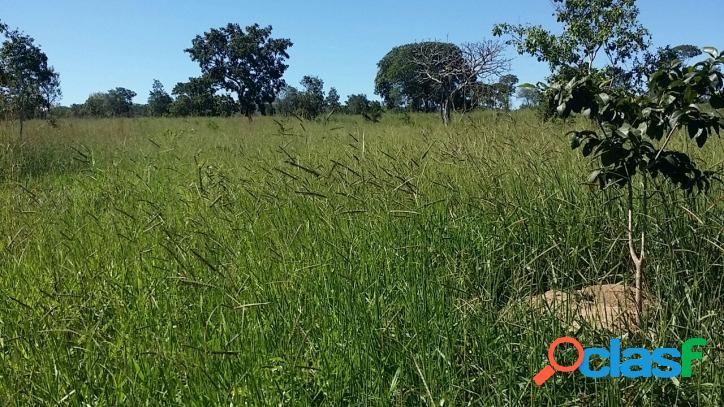 Fazenda em Brasilândia MG - 905,84 hectares - 187 alqueires 1
