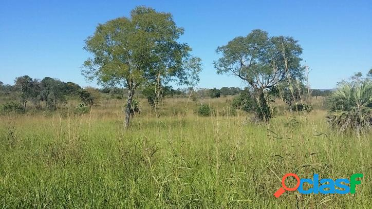 Fazenda em Brasilândia MG - 905,84 hectares - 187 alqueires 2