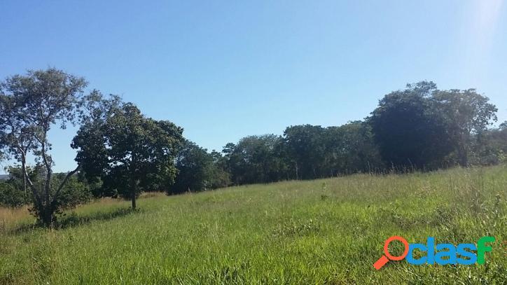 Fazenda em Brasilândia MG - 905,84 hectares - 187 alqueires 3