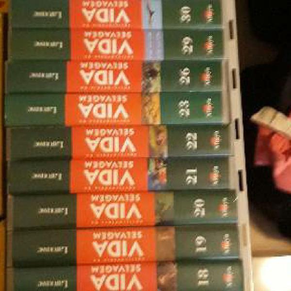 25 fitas vhs - coleção animais selvagens editora larousse