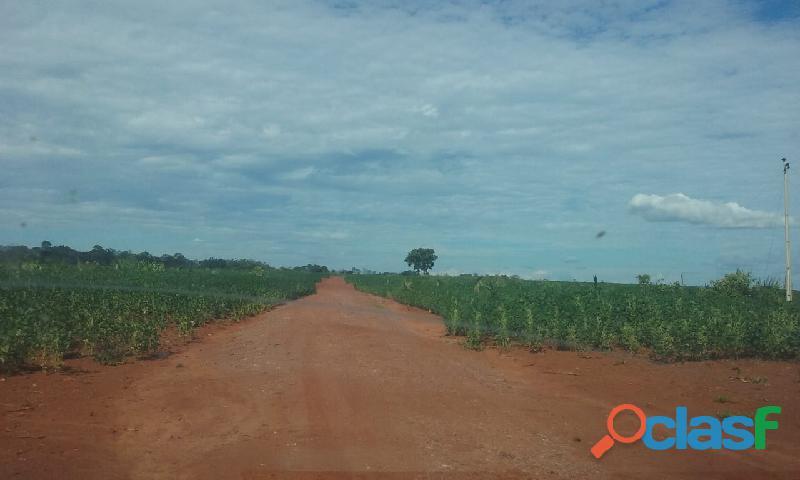 172 Alqs 40 Plantado Ótima Logística 2 Córregos Darcinópolis TO 1