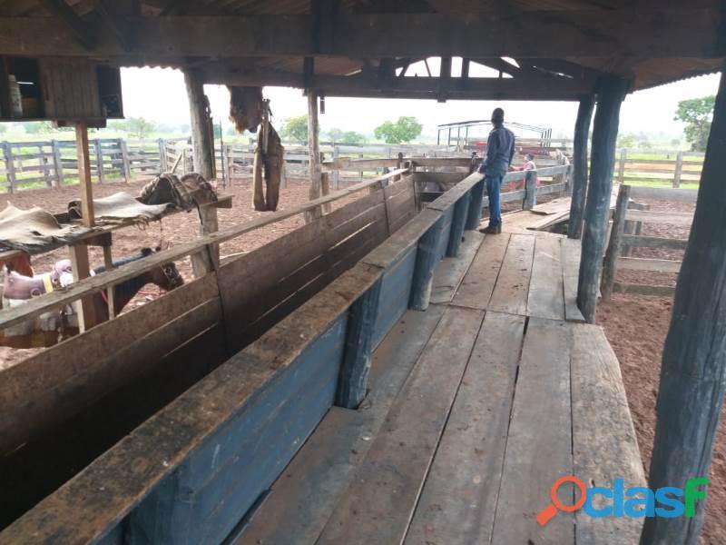 909 Alqs Ótima Em Tudo P/ Agricultura Bem Estruturada Mineiros GO 2