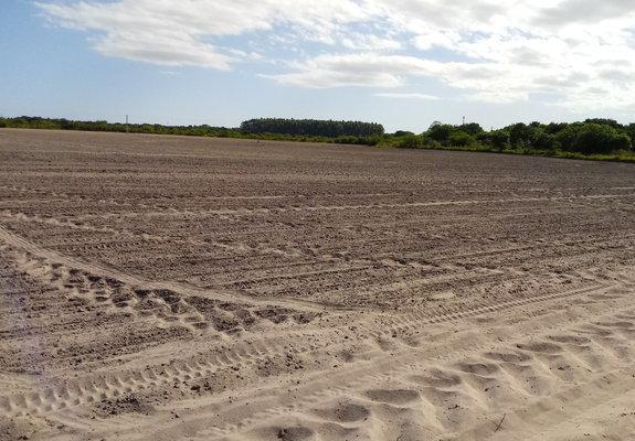 Excelente imóvel rural - planta todo com arroz - tapes/rs