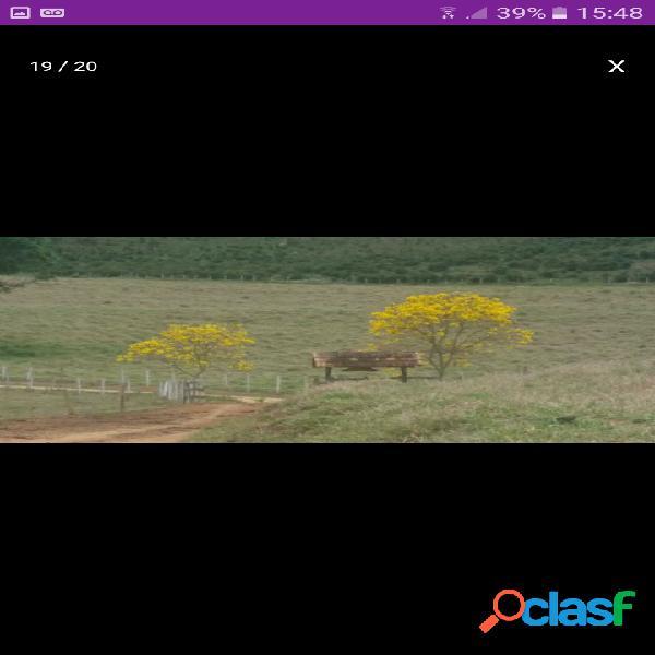 Fazenda em Santa Rita do sapucaí (Vale da Eletrônica), clima, vista. 2
