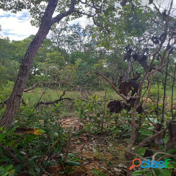 1500 Alqs Potencial Pra Soja Solo Misto Plana Lagoa do TO