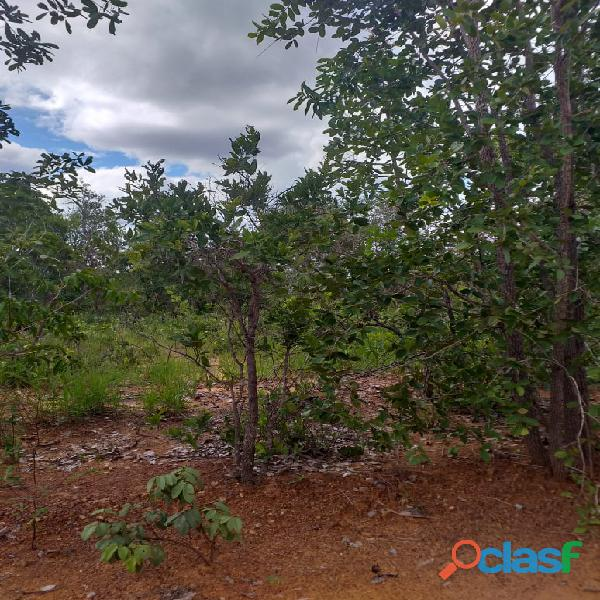 1500 Alqs Potencial Pra Soja Solo Misto Plana Lagoa do TO 1