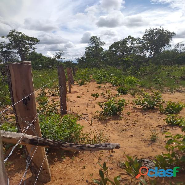 1500 Alqs Potencial Pra Soja Solo Misto Plana Lagoa do TO 2